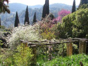 Сады и парки Лазурного берега